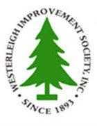 WIS_Logo1